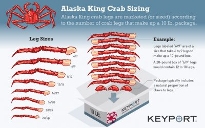 King Crab Sizing Guide