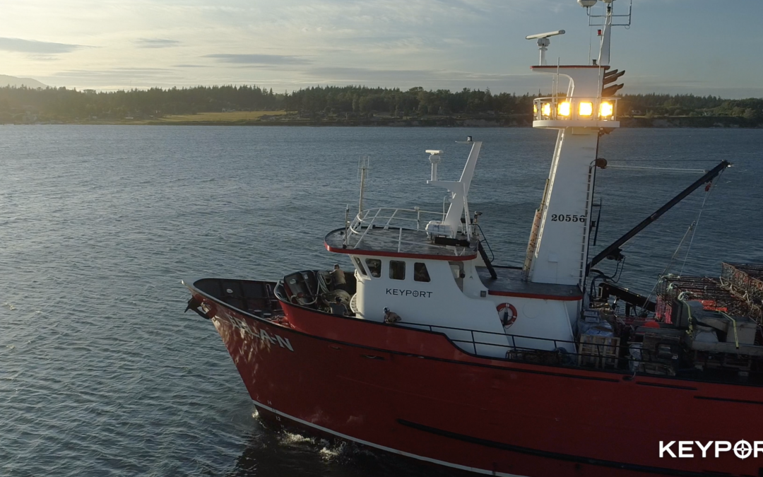 Total Allowable Catch Announced for Red King Crab, Snow Crab and Bairdi