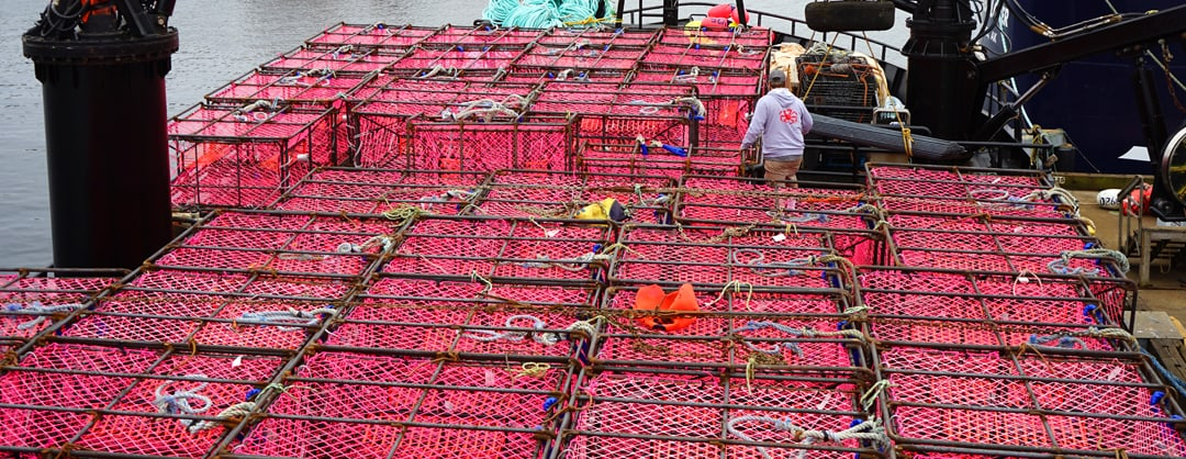 Pink pots for crab fishing